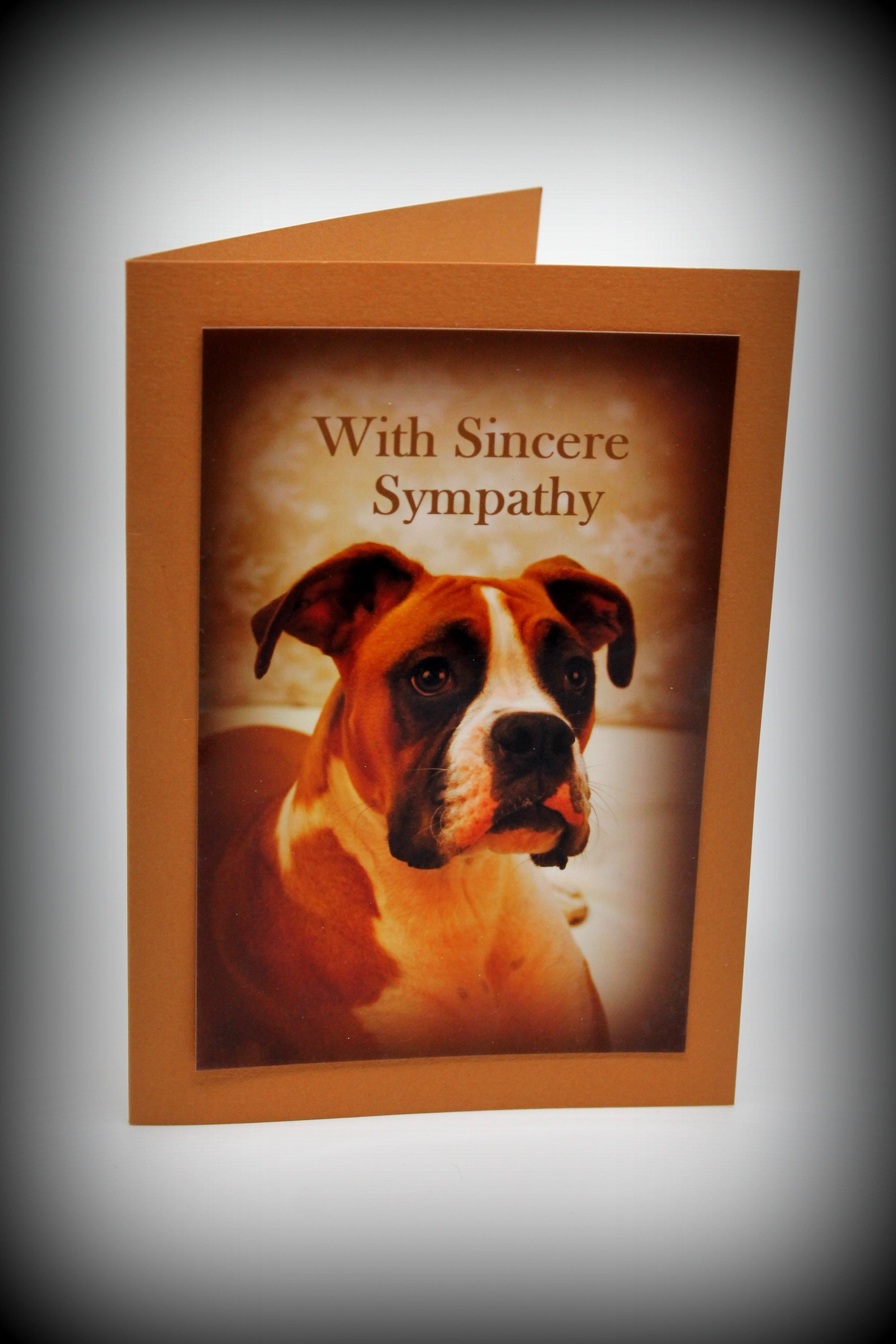 Pet Sympathy Cards Assorted Canine (set of 5)
