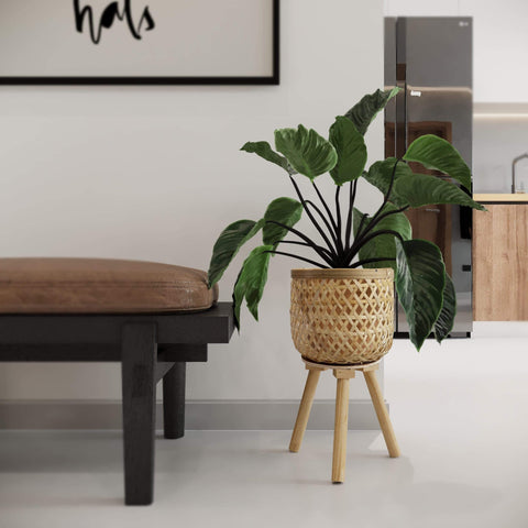 Bamboo Woven Plant Pot on Wooden Standing Legs for Apartment Home Decoration and Display