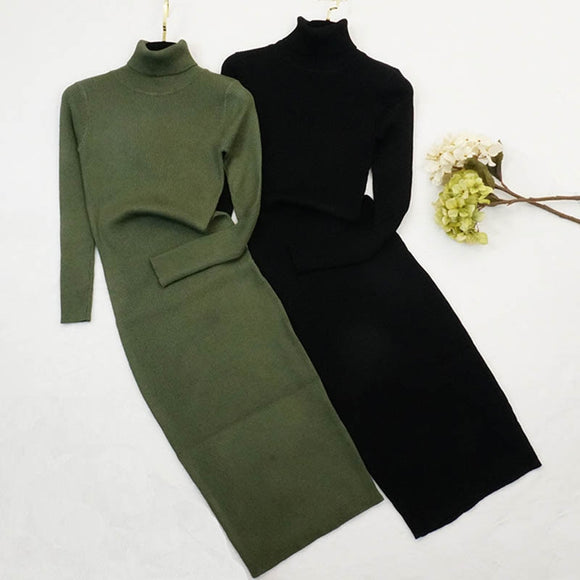 New Autumn Winter Women Knitted Dress Turtleneck Sweater Dresses Lady Slim Bodycon Long Sleeve Bottoming Dress Vestidos PP003