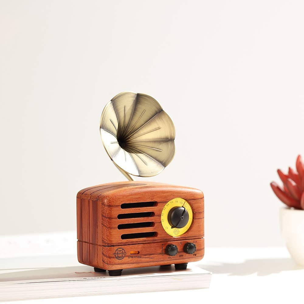Bluetooth Mini Wood Radio and Speaker