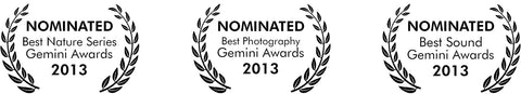 Gemini Awards