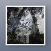 "Load image into Gallery viewer, ""CLAIR OBSCUR VEGETAL"" by Nicolas Le Beuan Bénic / FREE SHIPPING"