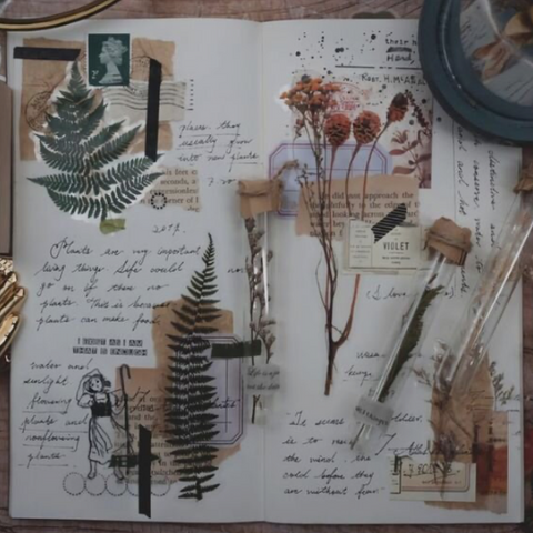 Open sketch book with writing, ink drawings and stuck in plants