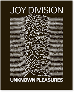 Joy Division Unknown Pleasures Enamel Pin