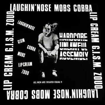 Comp - Hardcore Unlawful Assembly LP