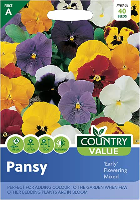 Pansy early flowering mixed seeds