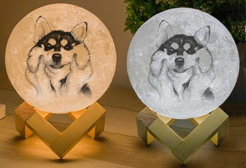 Custom Moon Lamp