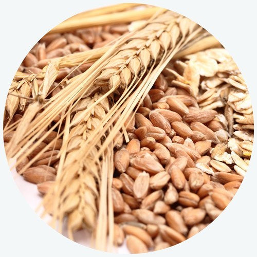 Whole grains are a good source of energy