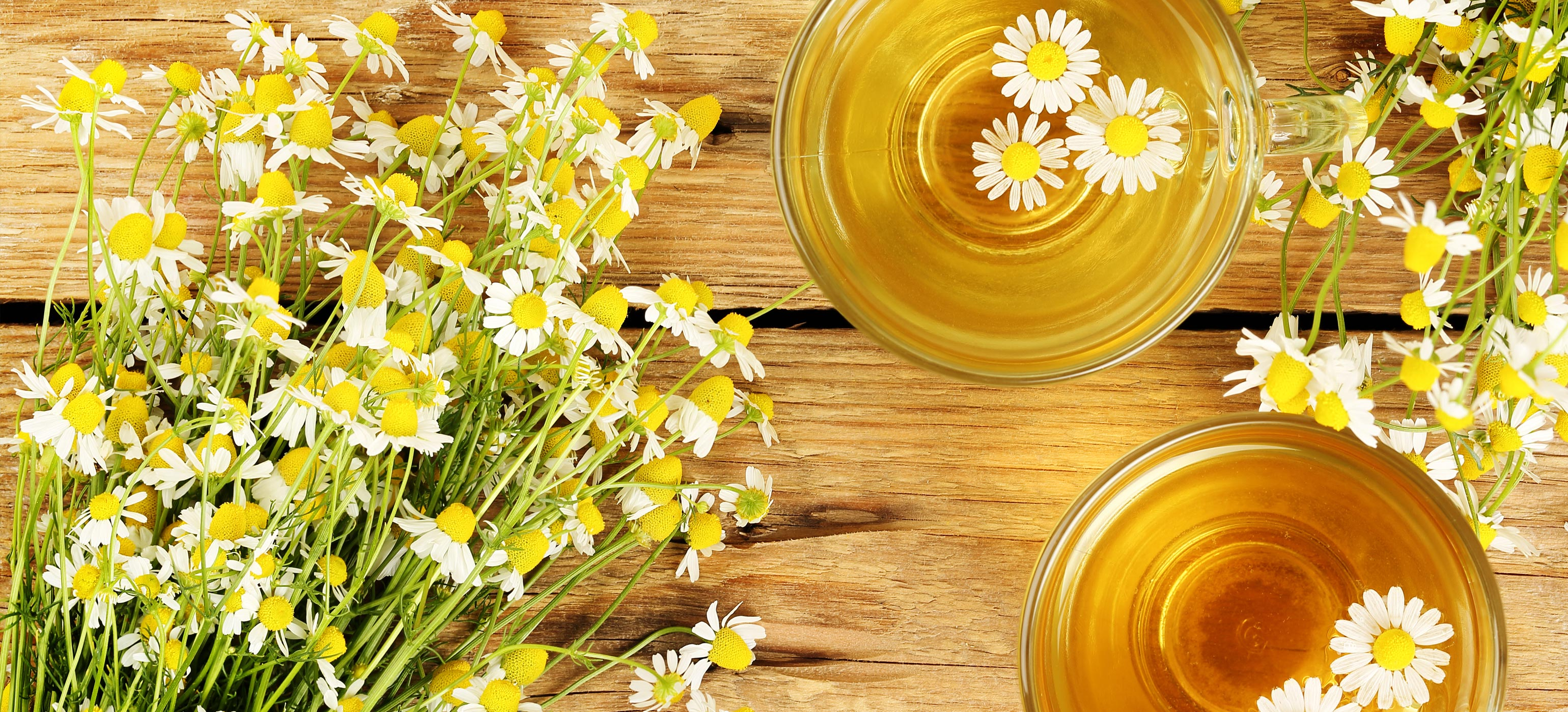 Twinings Camomile Infusions