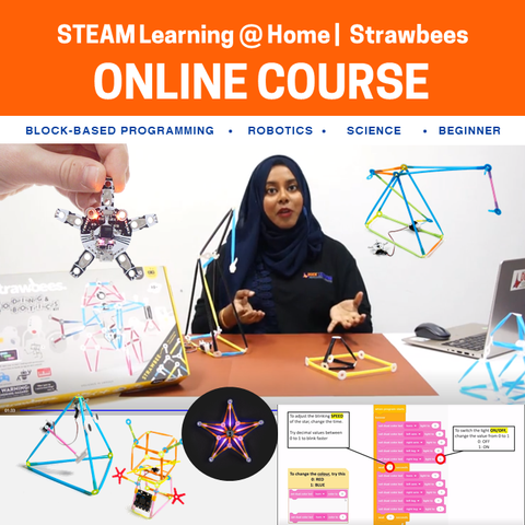 Creativity and Coding with Strawbees® Online Course (Bundle Available)