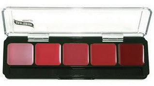 5 Shade Lip Palette