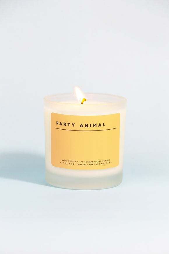 Party Animal Soy Wax Candle