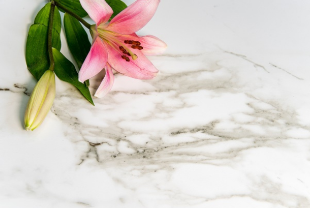 Primo Epoxy Resin Kits Can Be Used For Countertops Coating