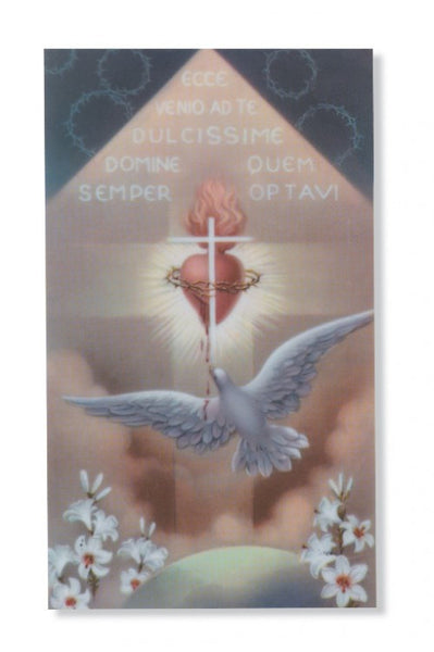 Holy Spirit Pin Card - St. Benedict's Catholic Store