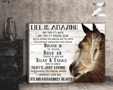 Zalooo Life Is Amazing Horse Wall Art Canvas