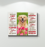 Zalooo Before I Met You Golden Retriever Wall Art Canvas