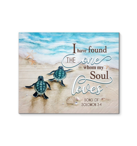 CANVAS TURTLE I have found the one whom my soul loves