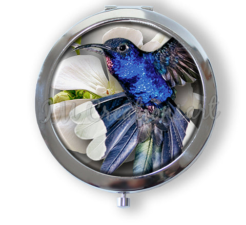 Stunning Royal Blue Hummingbird