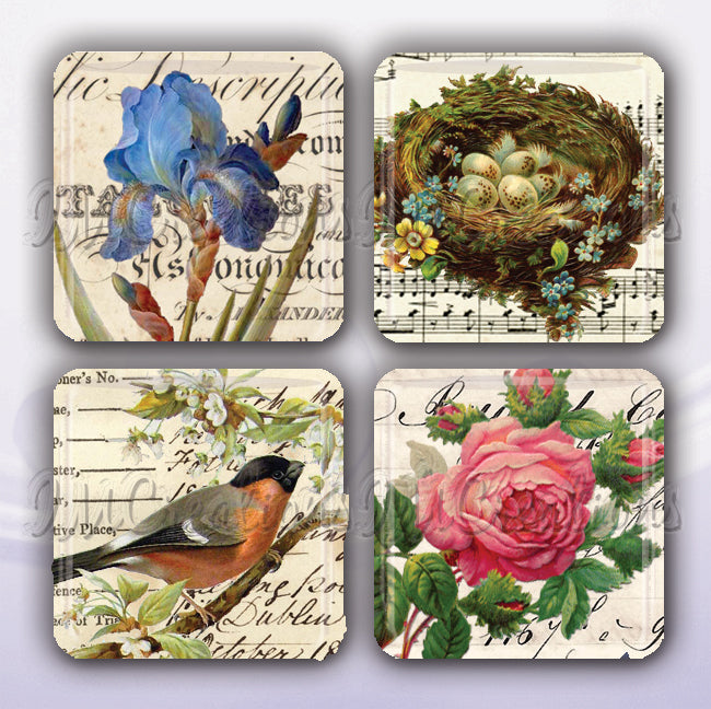 Victorian Nature Collection
