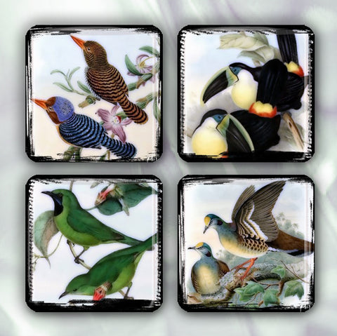Pretty Bird Lovers Collection