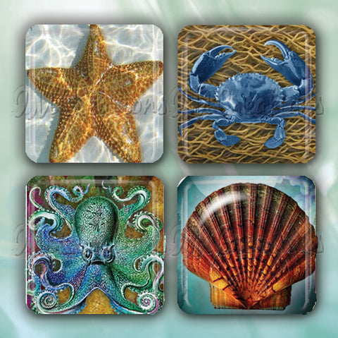 Sea Creatures Collection