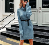 Janet Turtle Neck Sweater Dress