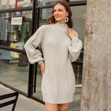 Casual Half Turtleneck Loose Style Knit Dress