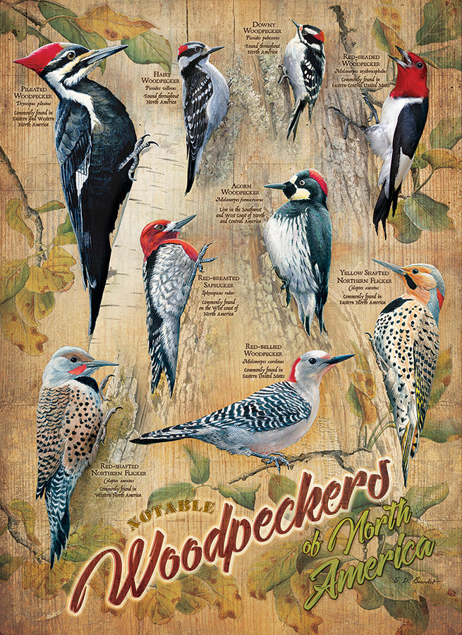 Cobble Hill - Notable Woodpeckers - 500 Piece Puzzle