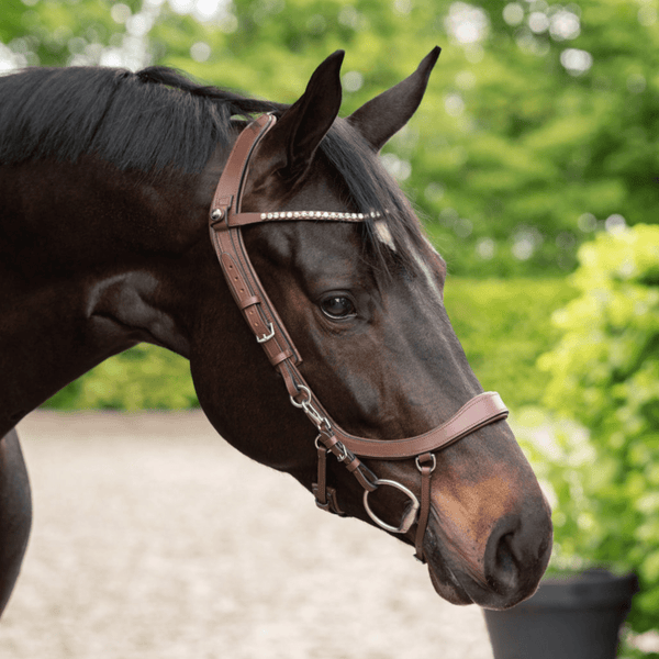 PresTeq FaySport ShineBright Browband
