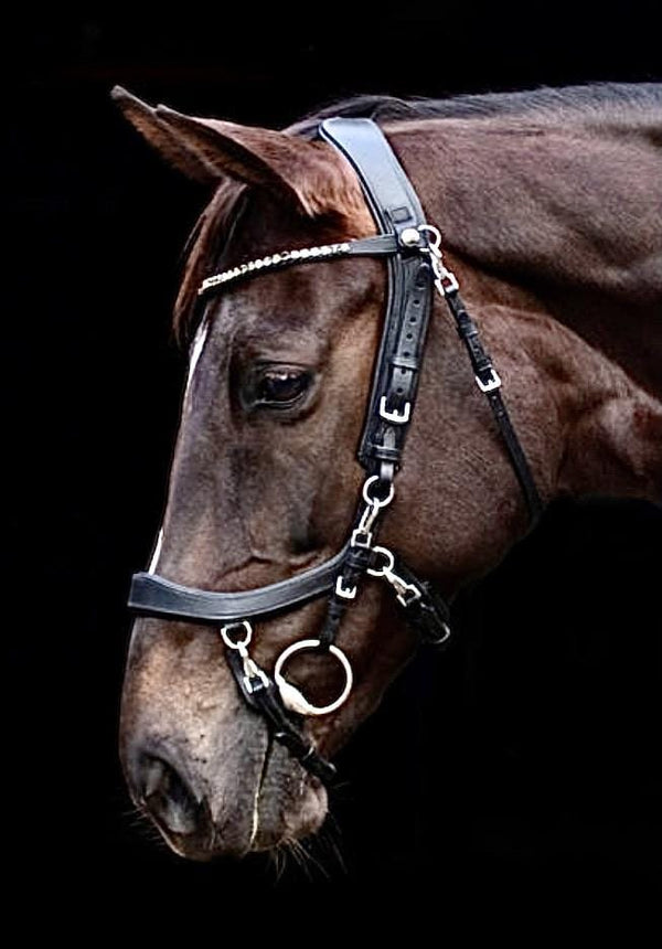 FaySport Bridle Throatlatch