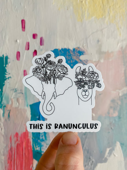 This is Ranunculus Sticker