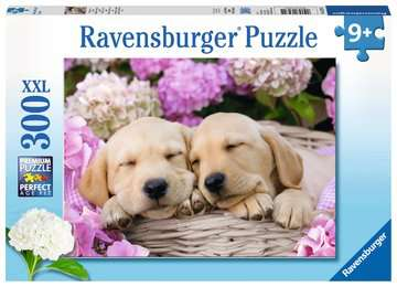 Sweet Dogs in a Basket - 300 piece puzzle