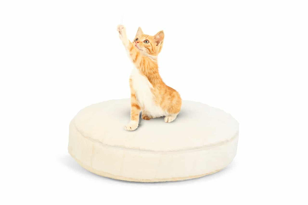Round Cuddler Kitten Bed - Rebec
