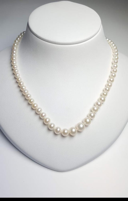 Pure Pearl Strand set in St Silver     4-9mm