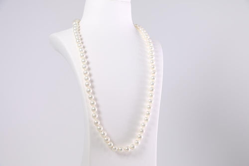 Coated South Sea Pearl 8mm Strand set with a Rhodium Plated Clasp