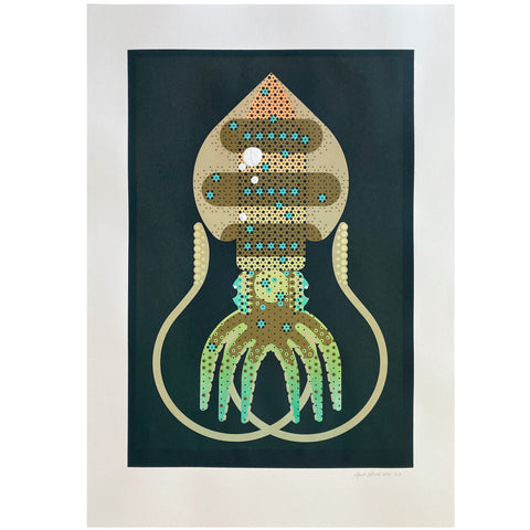 Southern Reef Squid