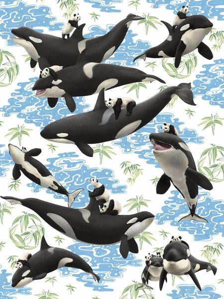 Captives: Orcas and Pandas