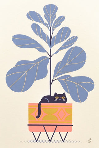 Fiddle Leaf Feline