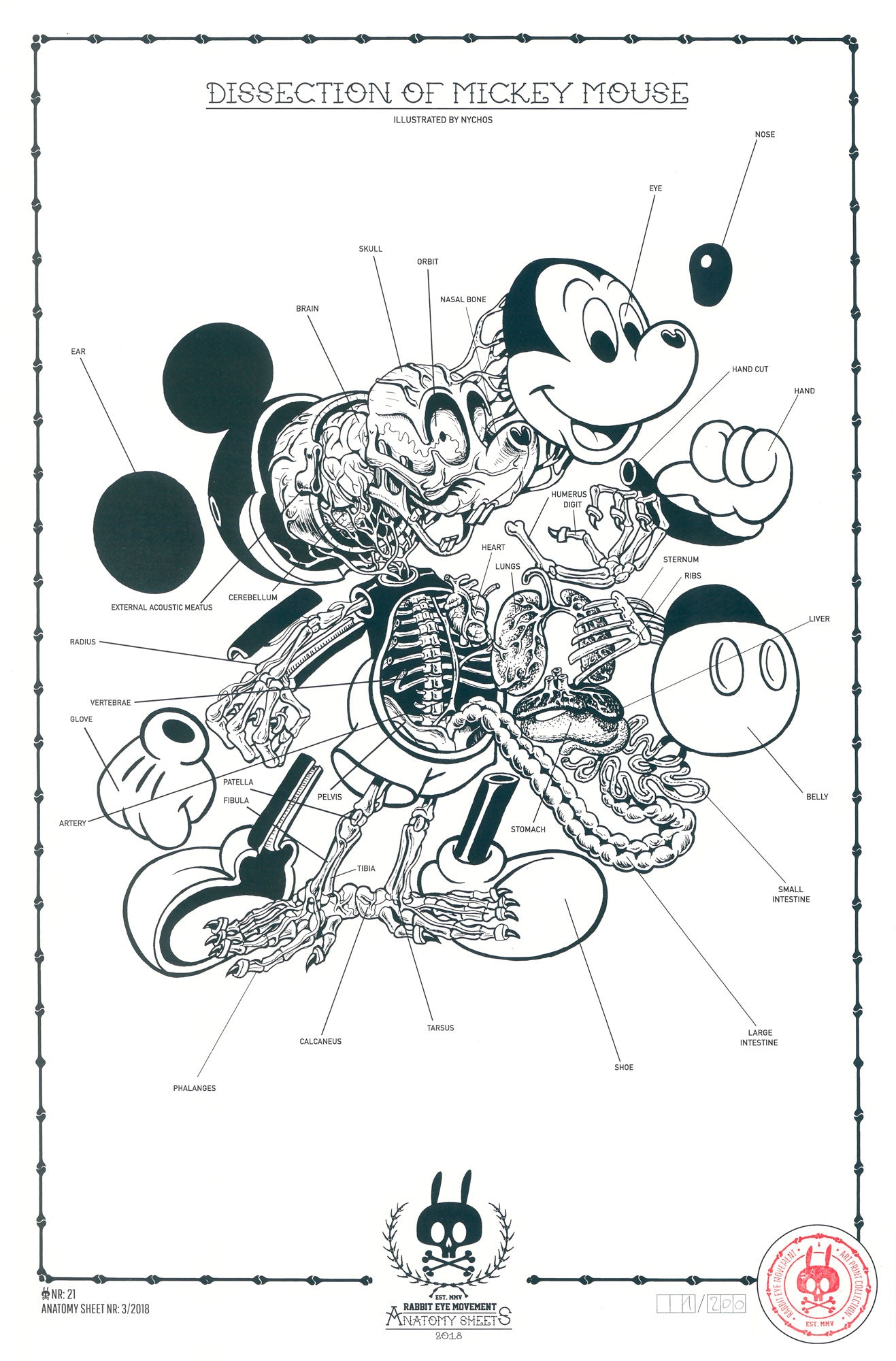 Dissection Of Mickey Mouse Anatomy Sheet Outr Gallery