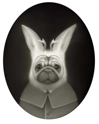 Pug in Jackalope Disguise