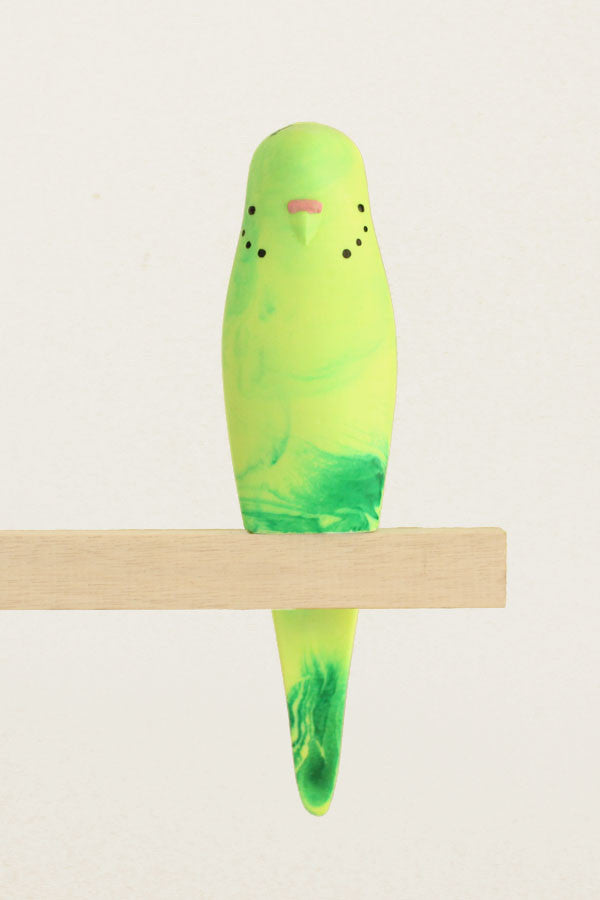Resin Budgerigar - 'Coola'