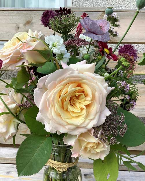 Bouquet of freshly cut flowers in glass jar. Large white rose getting yellow at the centre, with many other blooms behind