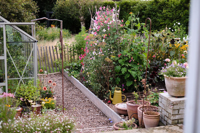 Jeska's garden at the end of the summer