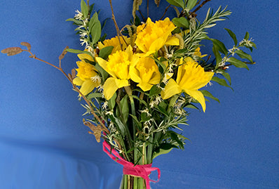 February flower arrangement with daffodils, catkins, sarcococca.