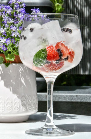 Gin and tonic with fruit and potted plant