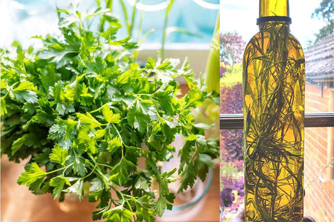 Herb oil preserved for the autumn and winter
