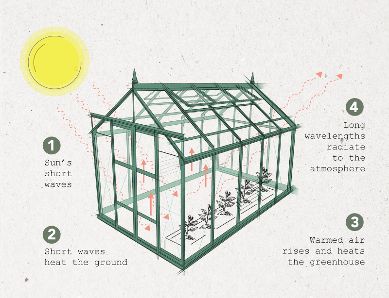 Diagram showing transfer of heat in a greenhouse