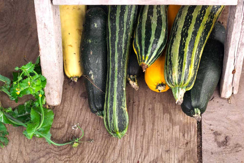 Squashes and marrows
