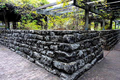 Stone wall raised bed with vines