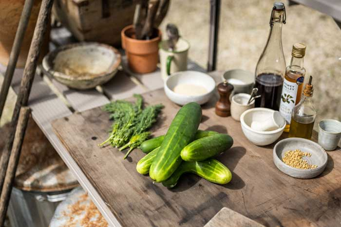 A pile of freshly picked cucumbers on a wooden chopping board. A few small bottles and dishes with ingredients sit alongside, with sprigs of dill and lovage. Sunshine streams into the greenhouse where the chopping board sits.